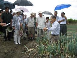 ネギ畑で水位上昇の実態について話を聞く参加者
