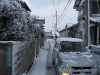 今朝からの雪が10cmは積もったでしょうか