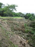 城山の樹木が伐採された