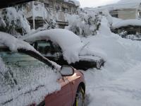 大雪であけた今年の正月